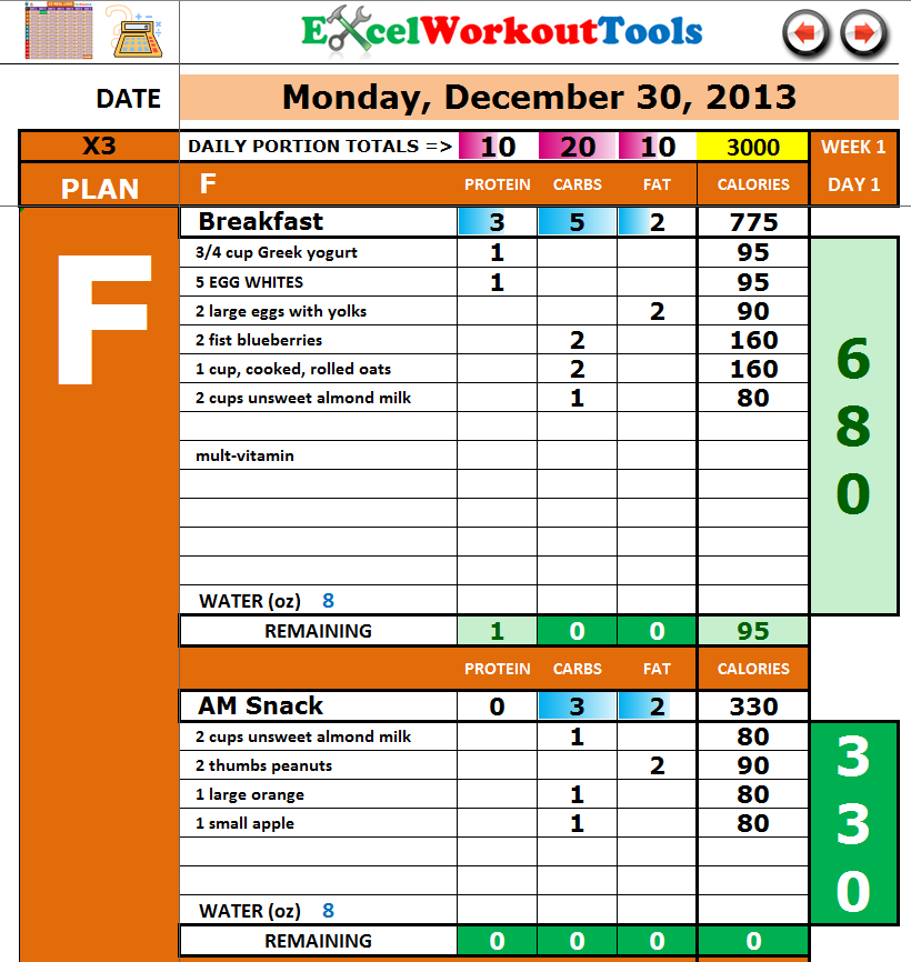 excel workout tools p90x3 daily meal journal