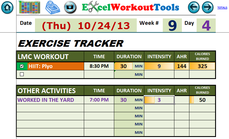 EXCEL WORKOUT TOOL DAILY JOURNAL WEEK 9 DAY 4 FOR LES MILLS COMBAT